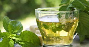 Tè verde: proprietà, benefici per la salute, utilizzi e controindicazioni. Scopri quali sono le proprietà benefiche del tè verde, perchè fa bene alla salute, come preparare una buona tazza di tè verde, le controindicazioni e se ci sono degli effetti collaterali dovuti ad un eccessivo consumo.
