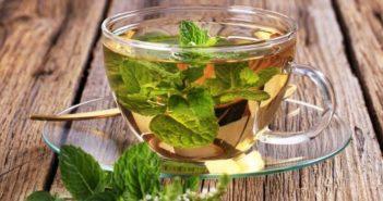 Tisane depurative e Tisane detox - Scopri come preparare una buona tazza di tisana depurativa fai da te per depurare l'organismo, il fegato ed i reni in modo naturale.