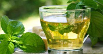 Tisane drenanti - Scopri le ricette di tisane drenanti fai da te e come preparare una buona tazza di tisana drenante a base di tarassaco, equiseto, pilosella, ortica, betulla e centella.