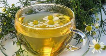 Tisane rilassanti - Scopri le ricette di tisane rilassanti e come preparare una buona tazza di tisana rilassante a base di camomilla, valeriana, malva, melissa, alloro e biancospino.