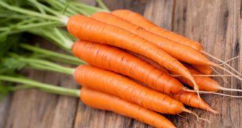 Carote: proprietà e benefici. Scopri le proprietà curative e terapeutiche della carota, i benefici per la salute, tutti gli utilizzi e le controindicazioni.