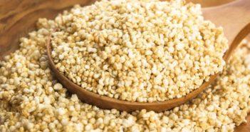 Amaranto proprietà benefici usi e controindicazioni. Scopri cos'è l'amaranto, le proprietà ed i benefici per la salute i valori nutrizionali dell'amaranto, le controindicazioni e gli effetti collaterali.