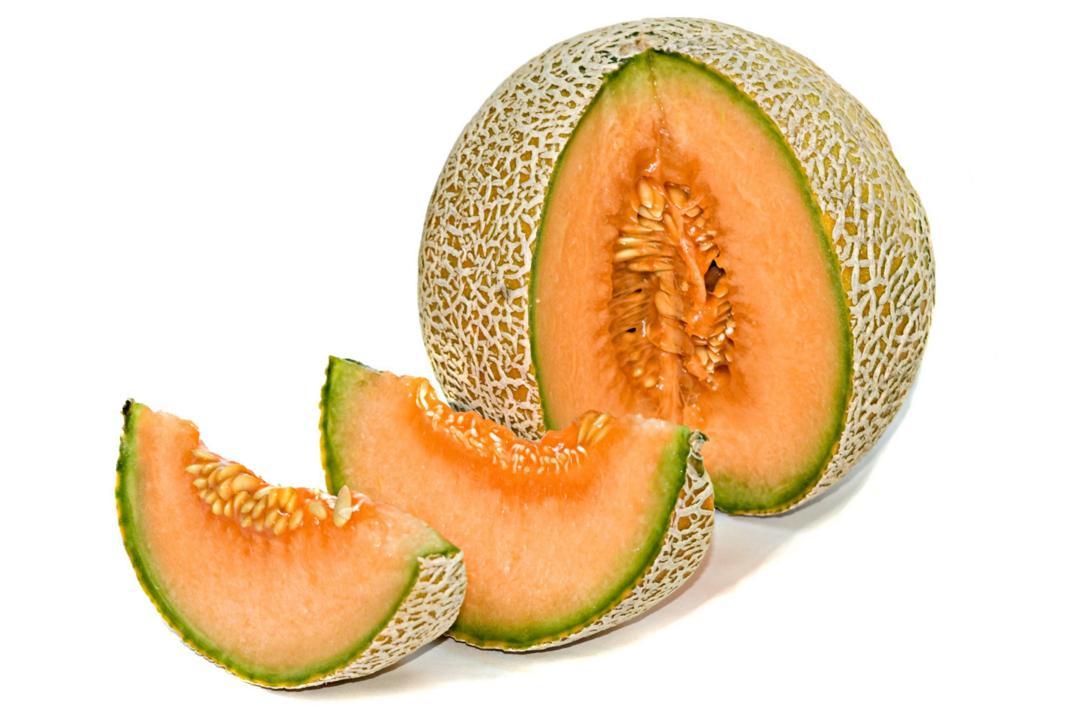 Melone propriet benefici valori nutrizionali usi e for Pianta di melone