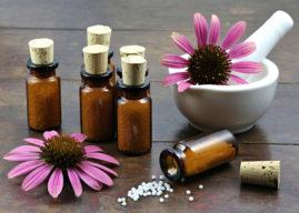 Echinacea: proprietà, benefici, usi e non solo