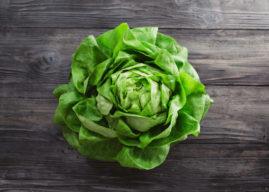 Lattuga: proprietà, valori nutrizionali, calorie, varietà e come coltivarla